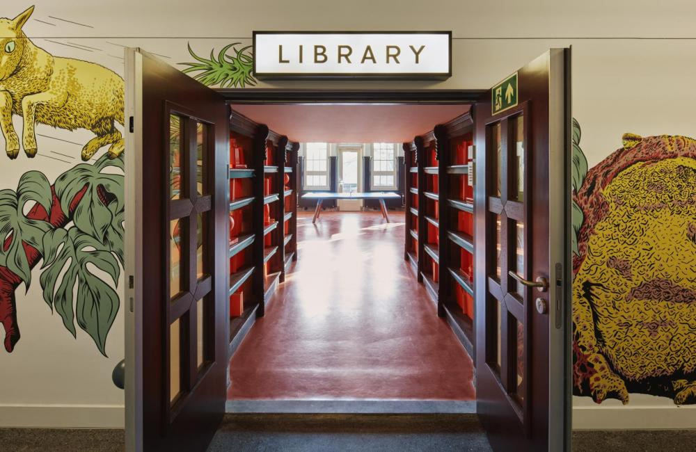 The Library is a hidden sanctuary of calm