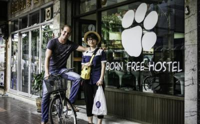 Hostels - Born Free Hostel - Vista