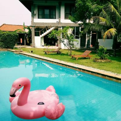 Hostels - Freedom Hostel Bali